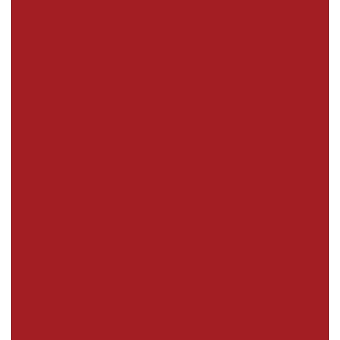 icon-integration-tmi